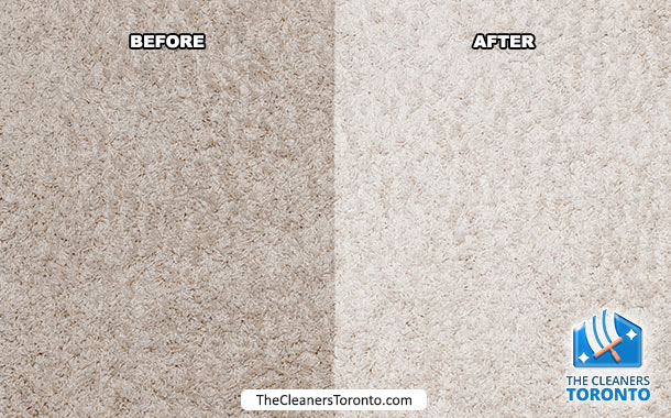 clean-carpet-thecleanerstoronto